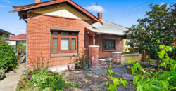 RENOVATORS AND DEVELOPERS BLANK CANVAS